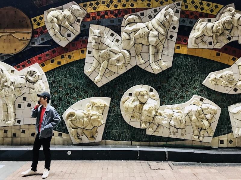 Стена Хатико